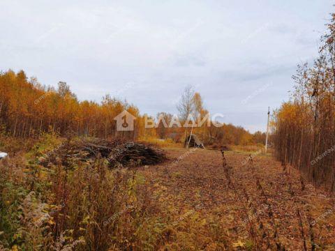 derevnya-kurcevo-gorodeckiy-rayon фото