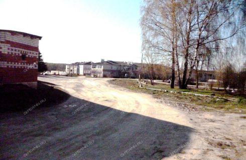 1-komnatnaya-selo-novoselki-vachskiy-rayon фото