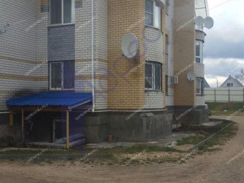 taunhaus-ul-yakova-shishkina-d-55a фото